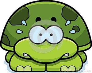 nervous-little-turtle-cartoon-illustration-looking-47437972